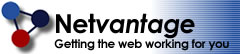 Netvantage Internet Web Design Logo - Home